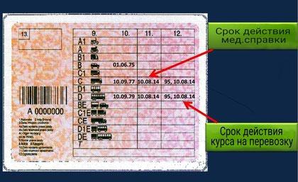 новый образец водительского удостоверения код 95